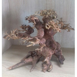 BONSAI DRIFTWOOD MODEL 1