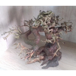 BONSAI DRIFTWOOD MODEL 3