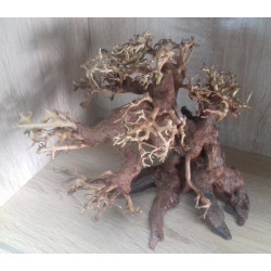BONSAI DRIFTWOOD MODEL 4